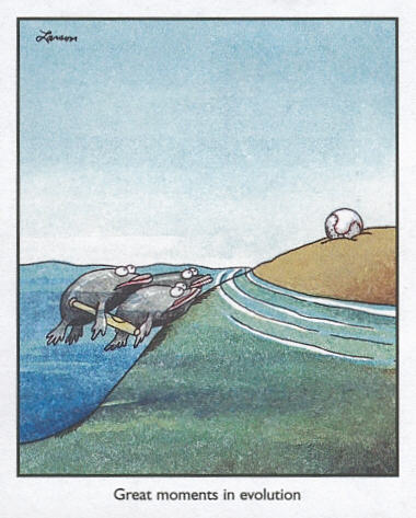 Gary-Larson-Fish-Evolution